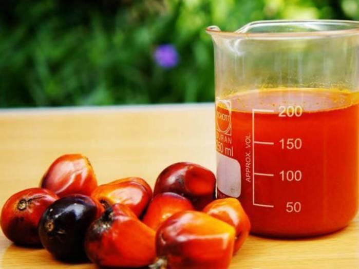 Les vertus de l'huile de palme